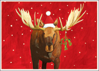 Moose Christmas Card