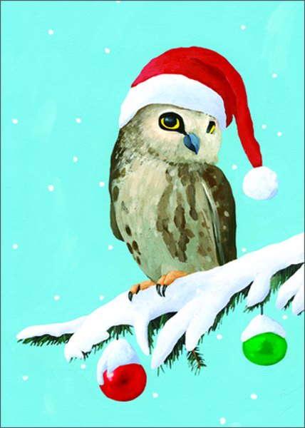 Owl (15 cards/15 envelopes) Allport Boxed Christmas Cards  INSIDE: Happy Owlidays!
