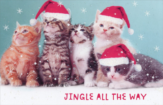 Jingle all the way kittens box of 14 cat christmas cards by jingle all the way kittens box of 14 cat christmas cards m4hsunfo