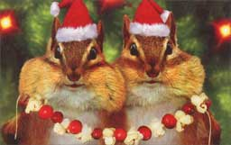 Chipmunks In Front Of Tree (1 mini gift card holder/1 envelope) Avanti Christmas Gift Card Holder  INSIDE: Wishing you a Merry Christmas with all the trimmings!