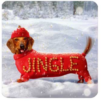 Jingle Dog (1 square gift card holder/1 envelope) Avanti Christmas Gift Card Holder - FRONT: Jingle  INSIDE: Happy Holidays!