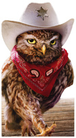 Cowboy Owl (1 oversized card/1 envelope) - Birthday Card  INSIDE: Happy Birthday, pardner!