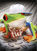 Hip Hop Frog (1 card/1 envelope) - Birthday Card - FRONT: Hip  INSIDE: Yo Yo Yo - Happy Birthday