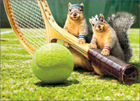 Squirrel Tennis Love (1 card/1 envelope) - Birthday Card  INSIDE: I love-love you! Happy Birthday