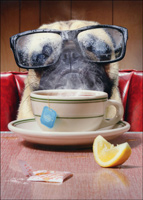 Pug With Steamed Glasses (1 card/1 envelope) Avanti Funny Dog Encouragement Card