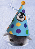 Penguin Party Hat: Pop Up (1 card/1 envelope) Avanti Stand Out Funny Birthday Card