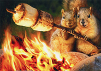 Squirrels Toasting Marshmallow (1 card/1 envelope) Avanti Funny Anniversary Card