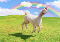 Alpaca Unicorn (1 card/1 envelope) Avanti Funny Birthday Card