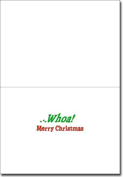 Dog Slides Across Frozen Pond Premium (1 card/1 envelope) Avanti Funny Premium Christmas Card - FRONT: Ho Ho�  INSIDE: �Whoa! Merry Christmas