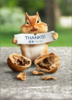 Chipmunk Reads Fortune (1 card/1 envelope) - Thank You Card - FRONT: THANKS!  INSIDE: Good fortune is a friend like you!
