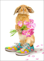 Bunny In Sneakers (1 card/1 envelope) - Easter Card