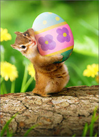 Chipmunk Holding Easter Egg (1 card/1 envelope) - Easter Card