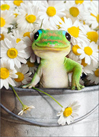 Gecko In Bucket Of Flowers (1 card/1 envelope) - Mother's Day Card