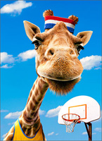 Giraffe Baller (1 card/1 envelope) - Father's Day Card  INSIDE: Thanks for all the one-on-one time! Happy Father's Day
