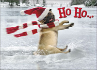 Dog Slides Across Frozen Pond Stand Out (1 card/1 envelope) - Christmas Card - FRONT: Ho Ho�  INSIDE: Whoa! Merry Christmas