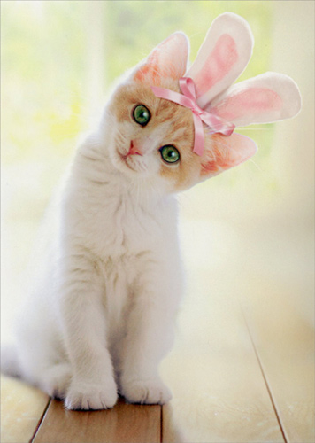 Kitten With Bunny Ears Cat Easter Card By Avanti Press