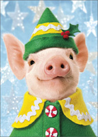 Pig Elf (1 card/1 envelope) - Christmas Card  INSIDE: Wishing you the Merriest little Christmas ever!