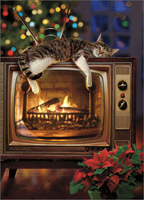 Cat On Yule Log TV (1 card/1 envelope) - Christmas Card