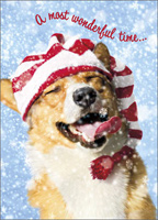 Dog Catching Snowflakes (1 card/1 envelope) - Christmas Card - FRONT: A most wonderful time�  INSIDE: �of the year! Happy Holidays