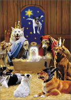 Ten Magnificent Mutts (1 card/1 envelope) Avanti Funny Christmas Card