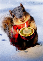 Snowy Squirrel Holds Candle (1 card/1 envelope) Avanti Christmas Card