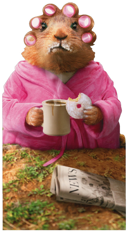 Morning Ground Hog Oversized Funny Birthday Card Greeting Card By