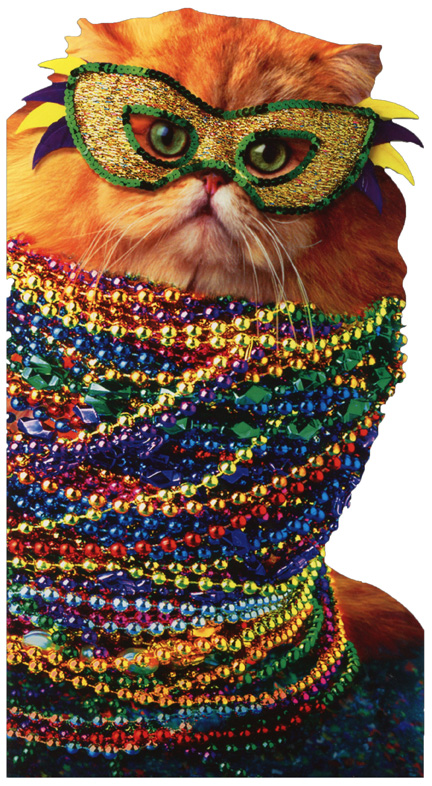 Mardi Gras Cat Oversized Funny Birthday Card Greeting Card By