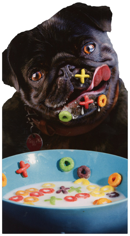 Dog Alphabet Cereal Oversized Funny Pug Birthday Card Greeting Card