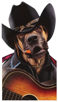 Singing Cowboy Dog (1 oversized card/1 envelope) Avanti Oversized Funny Birthday Card
