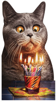 Cat Flaming Shot (1 oversized card/1 envelope) - Birthday Card  INSIDE: Make a wish! Happy Birthday