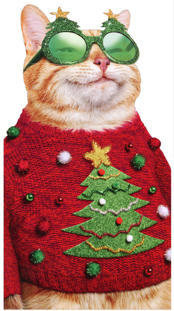 Ugly Christmas Sweater Cat.Details About Cat In Ugly Christmas Sweater Avanti Little Big Funny Humorous Christmas Card