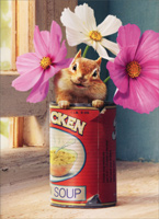 Chipmunk In Chicken Soup Can (1 card/1 envelope) - Get Well Card  INSIDE: Feel Souper Soon!