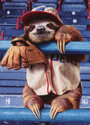 Sloth At Baseball Game (1 card/1 envelope) Avanti Birthday Card  INSIDE: Hope it's a grand slam! Happy Birthday