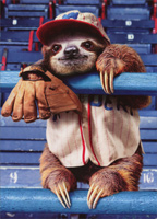 Sloth At Baseball Game (1 card/1 envelope) - Birthday Card  INSIDE: Hope it's a grand slam! Happy Birthday