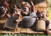 Raccoon Jug Band (1 card/1 envelope) Avanti Funny Birthday Card