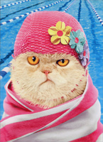 Cat Wears Bathing Cap  (1 card/1 envelope) - Just For Fun Card  INSIDE: How many laps is a cheeseburger again?!