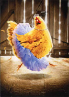 Chicken in Tutu (1 card/1 envelope) - Birthday Card  INSIDE: Happy Birthday �to one fabulous chick!