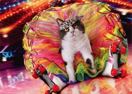 Roller Queen Cat Funny Birthday Card Greeting Card By Avanti Press