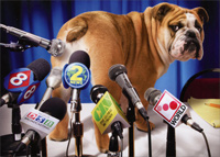 Dog at News Conference (1 card/1 envelope) - Birthday Card  INSIDE: Breaking News� Happy Birthday!