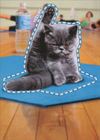 Yoga Cat Sticker Card (1 card/1 envelope) - Just For Fun Card  INSIDE: I meditate, I do yoga, I chant� and I still want to smack someone!