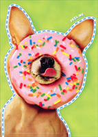Chihuahua With Donut On Nose Sticker Card (1 card/1 envelope) Avanti Peel and Stick Dog Birthday Card