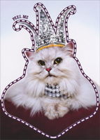Princess Kitten Sticker Card (1 card/1 envelope) - Birthday Card  INSIDE: Everyday you sparkle, but today you rule! Happy Birthday