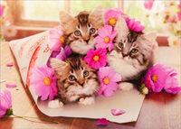 Kitten Bouquet (1 card/1 envelope) - Birthday Card  INSIDE: Hugs and kittens! Happy Birthday