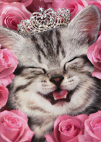 Kitten Face Flowers Tiara (1 card/1 envelope) - Birthday Card  INSIDE: You're a Gem! Happy Birthday
