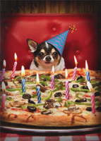 Dog With Birthday Pizza (1 card/1 envelope) - Birthday Card  INSIDE: Happy Birthday with extra everything!