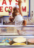 Baby Orangutan Serves Ice Cream (1 card/1 envelope) - Birthday Card  INSIDE: It's a four scoop kind of day! Happy Birthday!