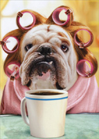 Dog With Curlers At Breakfast (1 card/1 envelope) - Just For Fun Card  INSIDE: #nomakeup #wouldyoubelieveit?