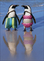 Penguins Holding Hands (1 card/1 envelope) Avanti Funny Anniversary Card