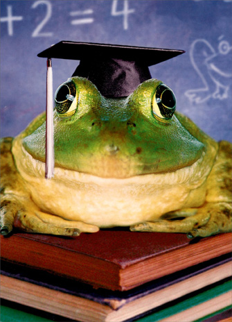 Grad Frog on Pile of Books (1 card/1 envelope) Funny Graduation Card - FRONT: No text  INSIDE: You made the leap!  Congratulations!