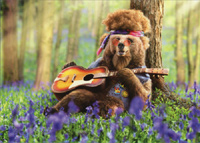 Bear Playing Guitar (1 card/1 envelope) Avanti Funny Birthday Card
